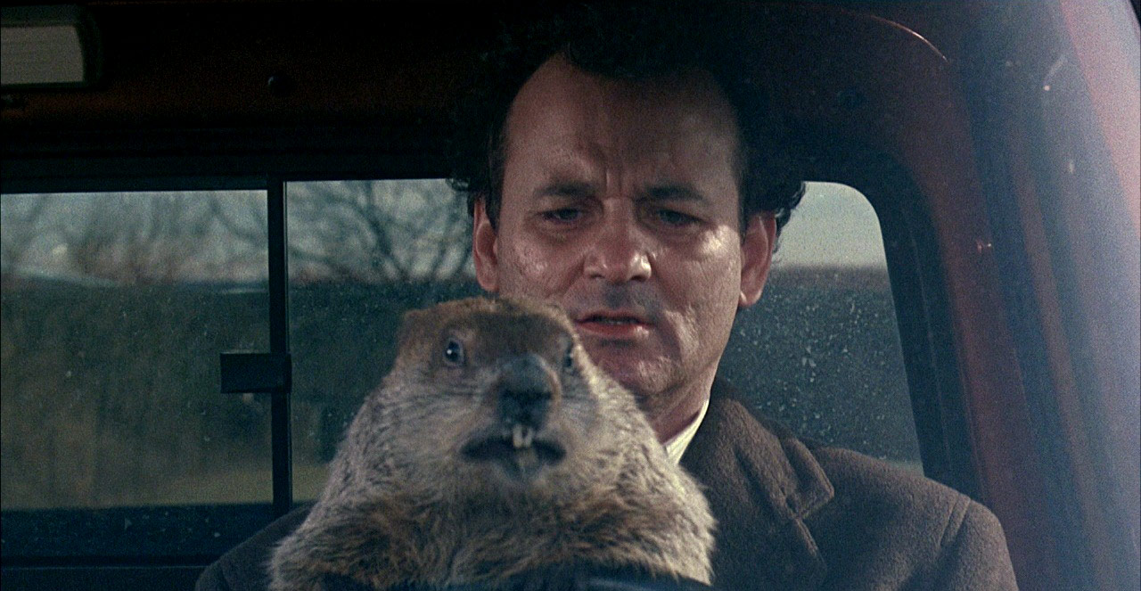 Groundhog Day screen capture