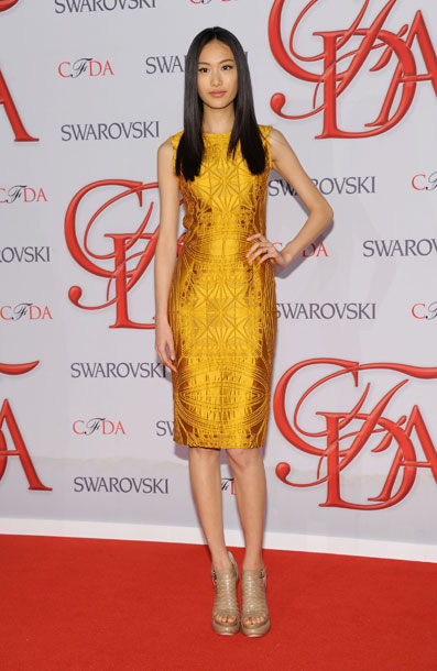 Trends from the 2012 CFDA Awards