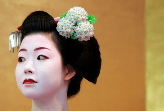 "In the rarefied ""flower and willow world"" of the geisha, every gesture is stylized and refined. While senior geisha typically wear Shimada-style chignons, their apprentice <i>maiko</i> wear more elaborate hairstyles. A <i>maiko'</i>s hair is set weekly by a specialist (<i>keppatsu-shi</i>), who amplifies her tresses with yak hair and wax, and constructs it into one of the five styles (<i>wareshinobu, ofuku, katsuyama, yakko-shimada, sakkou</i>) that mark her stages of apprenticeship. A <i>maiko</i>'s coiffure is adorned with ornaments (<i>kanzashi</i>) reflecting the season and is preserved by a neck support while sleeping."