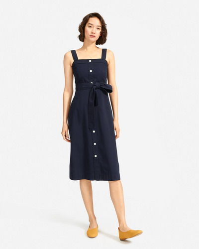 Everlane Cotton Weave Picnic Dress