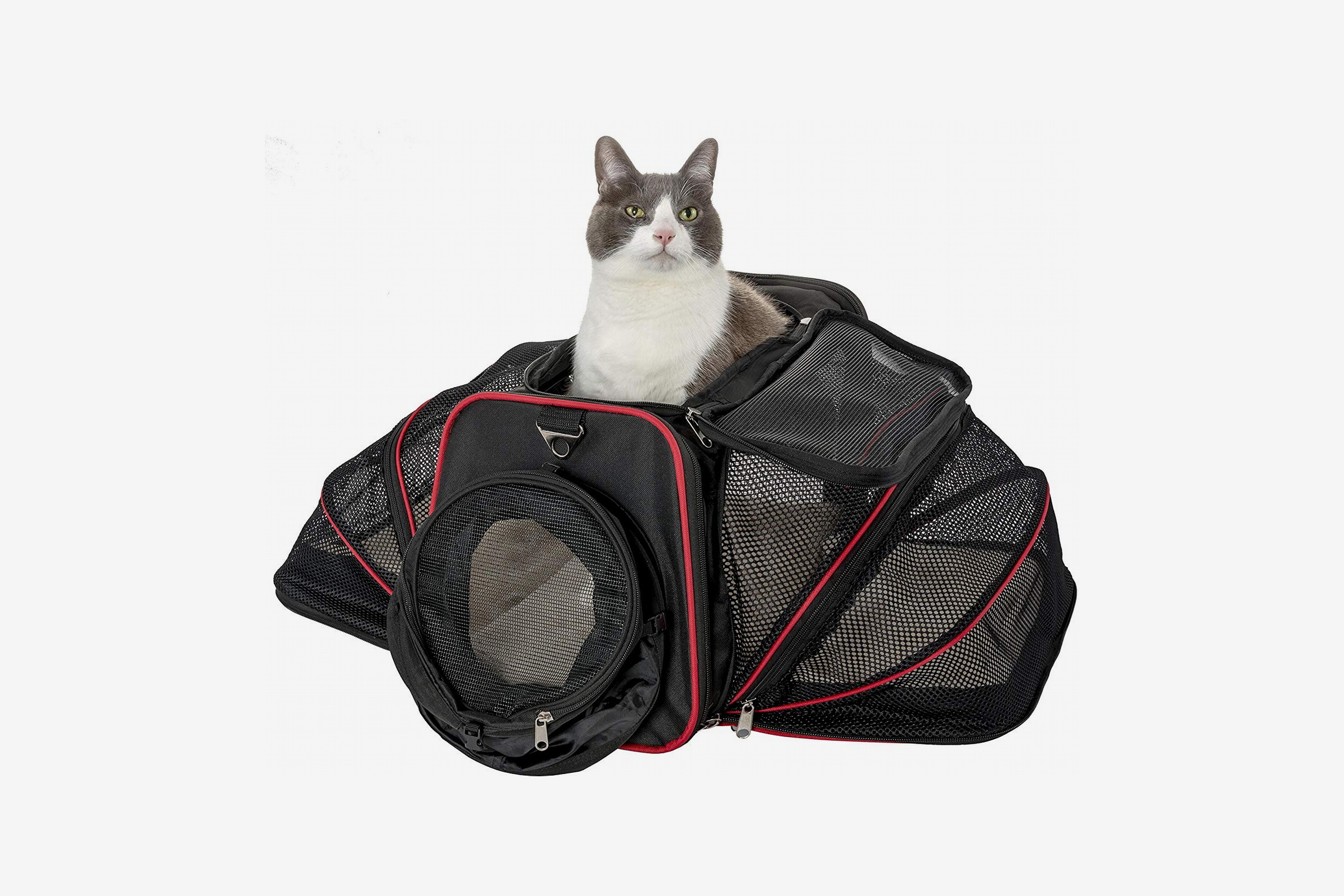 9b0bfc3fad Premium Airline Approved Expandable Pet Carrier with Tunnel