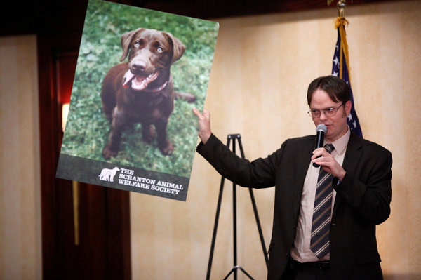 "THE OFFICE -- ""Fundraiser"" Episode 822 -- Pictured: Rainn Wilson as Dwight Schrute."
