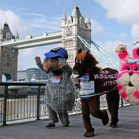 LONDON, ENGLAND - APRIL 20:  Competitors attempting to break various Guinness World Records pose in front of Tower Bridge during a photocall ahead of the Virgin London Marathon 2012 on April 20, 2012 in London, England. Mark Millrine will attempt to break the Guinness World Record for the fastest marathon completed dressed as a book character. Marc Jenner, dressed in costume as children's tv programme character Bagpuss will attempt to break the Guinness World Record for the fastest marathon completed dressed as a television character.  (Photo by Andrew Redington/Getty Images)