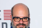 Actor David Cross attends the Netflix's 'House Of Cards' New York Premiere at Alice Tully Hall on January 30, 2013 in New York City.