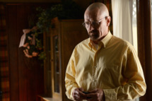 Walter White (Bryan Cranston) - Breaking Bad - Season 5, Episode 8 - Photo Credit: Ursula Coyote/AMC