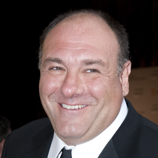 LOS ANGELES, CA - JULY 09:  James Gandolfini arrives at the 2011 BAFTA Brits To Watch Event at the Belasco Theatre on July 9, 2011 in Los Angeles, California. The newlywed Duke and Duchess of Cambridge were in attendance on the ninth day of their first joint overseas tour visiting Canada and the United States. (Photo by Mark Large - Pool/Getty Images)