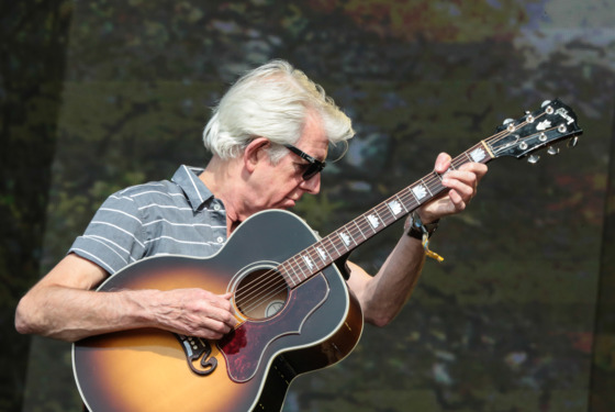 Nick Lowe performs on stage at British Summer Time Festival at Hyde Park on July 12, 2013 in London, England.