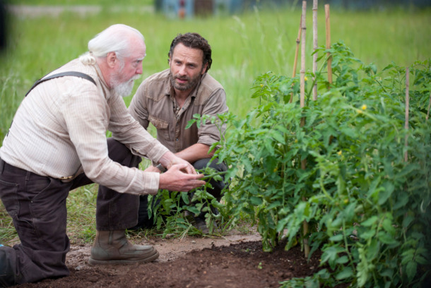 Hershel Greene (Scott Wilson) and Rick Grimes (Andrew Lincoln) - The Walking Dead
