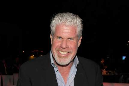 CENTURY CITY, CA - OCTOBER 16:  Actor Ron Perlman attends The Paley Center for Media's 2013 benefit gala honoring FX Networks with the Paley Prize for Innovation & Excellence at Fox Studio Lot on October 16, 2013 in Century City, California.  (Photo by Kevin Winter/Getty Images)