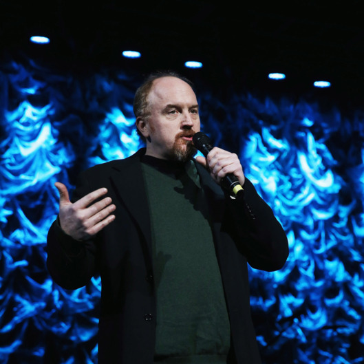 "Louis C.K. speaks onstage at ""Howard Stern's Birthday Bash"" presented by SiriusXM, produced by Howard Stern Productions at Hammerstein Ballroom on January 31, 2014 in New York City."