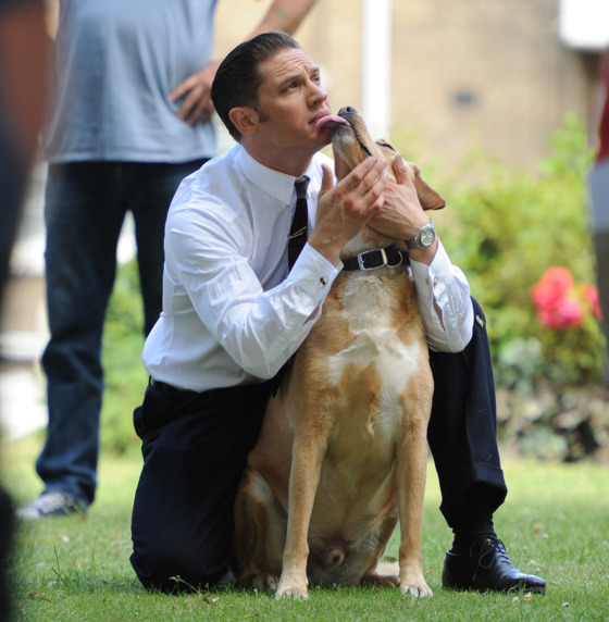 Actor Tom Hardy and his dog off set during the filming of 'Legend' in East London. <P> Pictured: Tom Hardy <P><B>Ref: SPL801641  150714  </B><BR/> Picture by: Gotcha Images / Splash News<BR/> </P><P> <B>Splash News and Pictures</B><BR/> Los Angeles:310-821-2666<BR/> New York:212-619-2666<BR/> London:870-934-2666<BR/> photodesk@splashnews.com<BR/> </P>