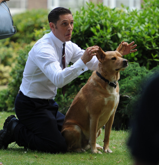 Actor Tom Hardy and his dog off set during the filming of 'Legend' in East London. <P> Pictured: Tom Hardy <P><B>Ref: SPL801641  150714  </B><BR/> Picture by: Gotcha Images / Splash News<BR/> </P><P> <B>Splash News and Pictures</B><BR/> Los Angeles:	310-821-2666<BR/> New York:	212-619-2666<BR/> London:	870-934-2666<BR/> photodesk@splashnews.com<BR/> </P>