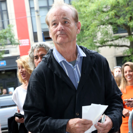 "TORONTO, ON - SEPTEMBER 06:  Actor Bill Murray attends the ""Men, Women & Children"" Premiere during the 2014 Toronto International Film Festival at Ryerson Theatre on September 6, 2014 in Toronto, Canada.  (Photo by Karl Walter/Getty Images)"