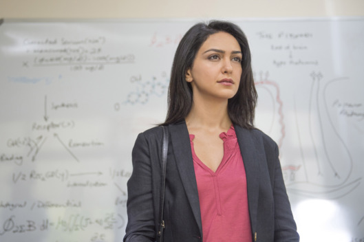 Nazanin Boniadi as Fara in Homeland (Season 4, Episode 3). - Photo:  Joe Alblas/SHOWTIME - Photo ID:  homeland_403_07675.R