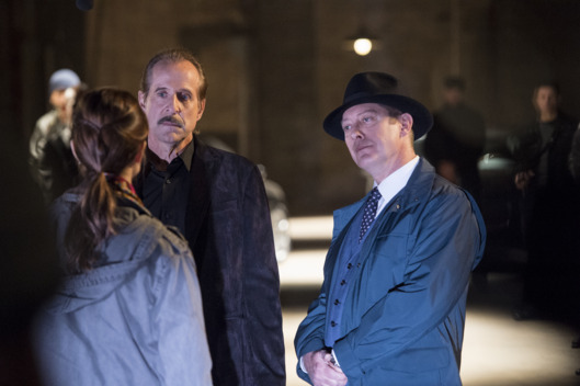"THE BLACKLIST -- ""The Decembrist"" Episode 208 -- Pictured: (l-r) Peter Stormare as Berlin, James Spader as Red Reddington -- (Photo by: David Giesbrecht/NBC)"