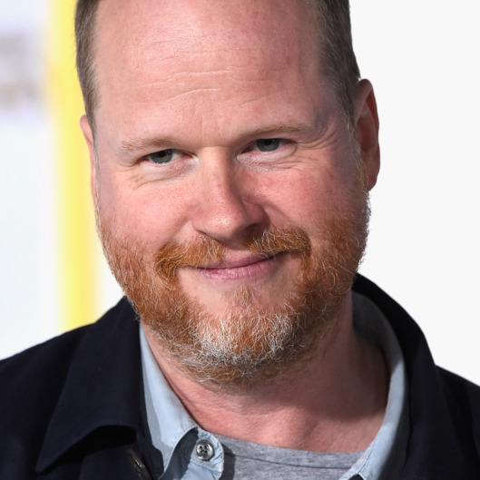 "LOS ANGELES, CA - NOVEMBER 17:  Screenwriter Joss Whedon attends the premiere of Lionsgate's ""The Hunger Games: Mockingjay - Part 1"" at Nokia Theatre L.A. Live on November 17, 2014 in Los Angeles, California.  (Photo by Frazer Harrison/Getty Images)"