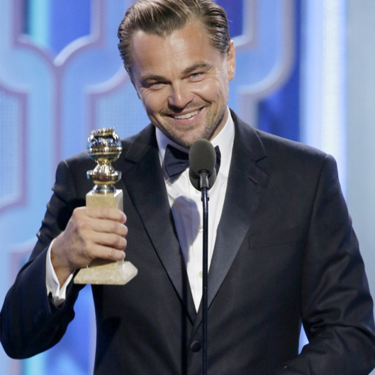 http://pixel.nymag.com/imgs/daily/vulture/2016/01/10/golden-globes/10-leo-2.w529.h529.jpg