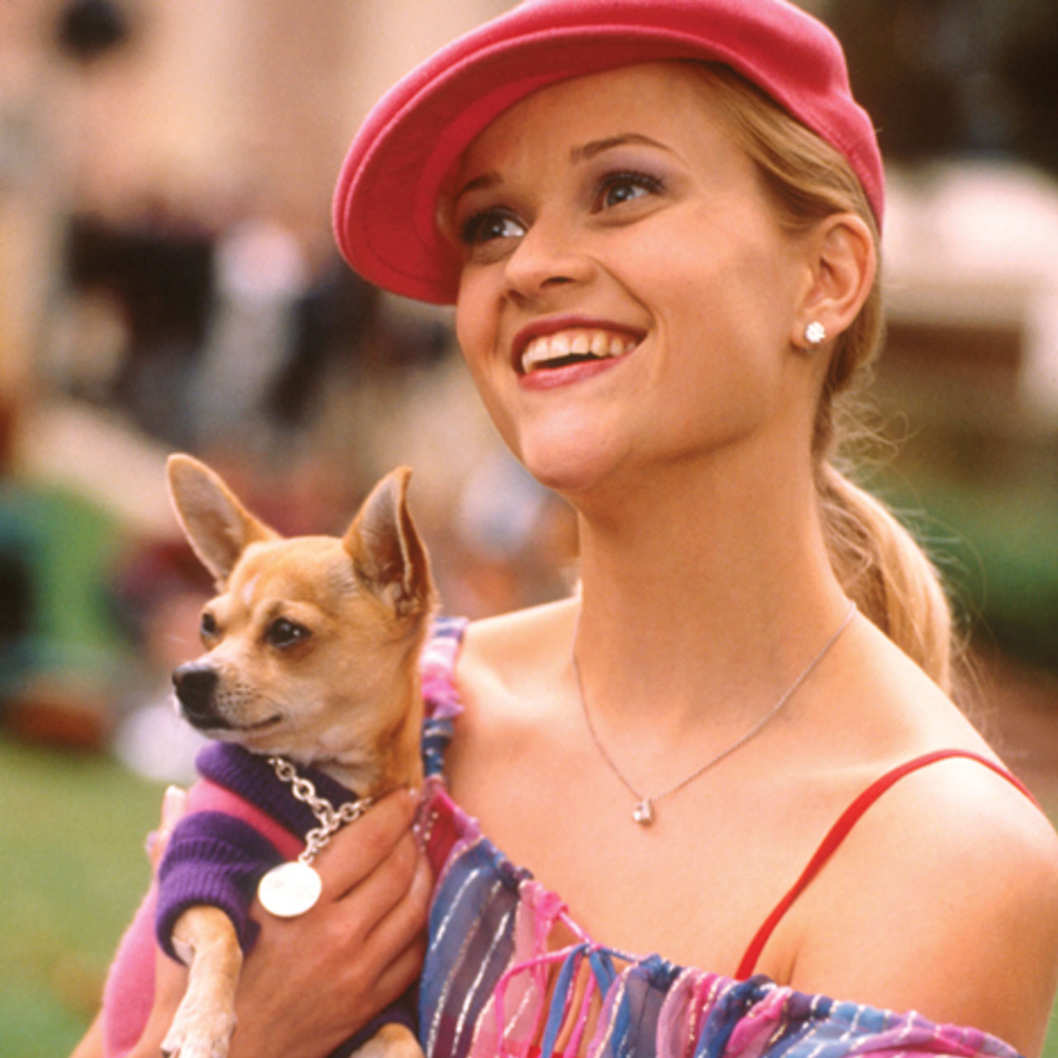 Legally Blonde Video Essay
