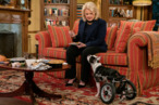 <em>Murphy Brown</em> Recap: You&rsquo;re Wheeling with the Big Dogs Now