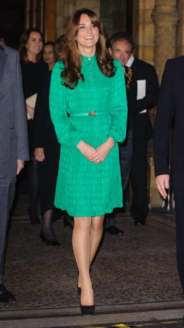 Photo 52 from November 27, 2012