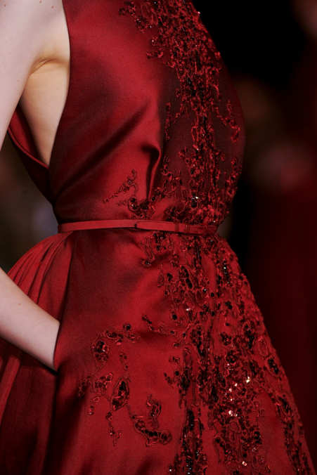 Detail Photo 3 from Elie Saab