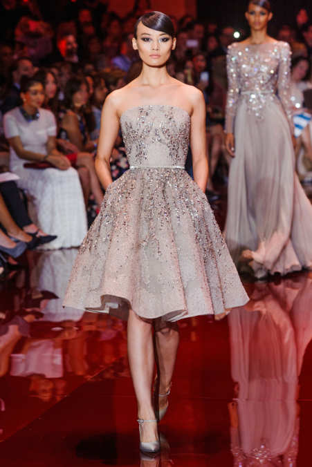 Photo 9 from Elie Saab