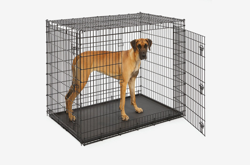 the 7 best dog crates and kennels