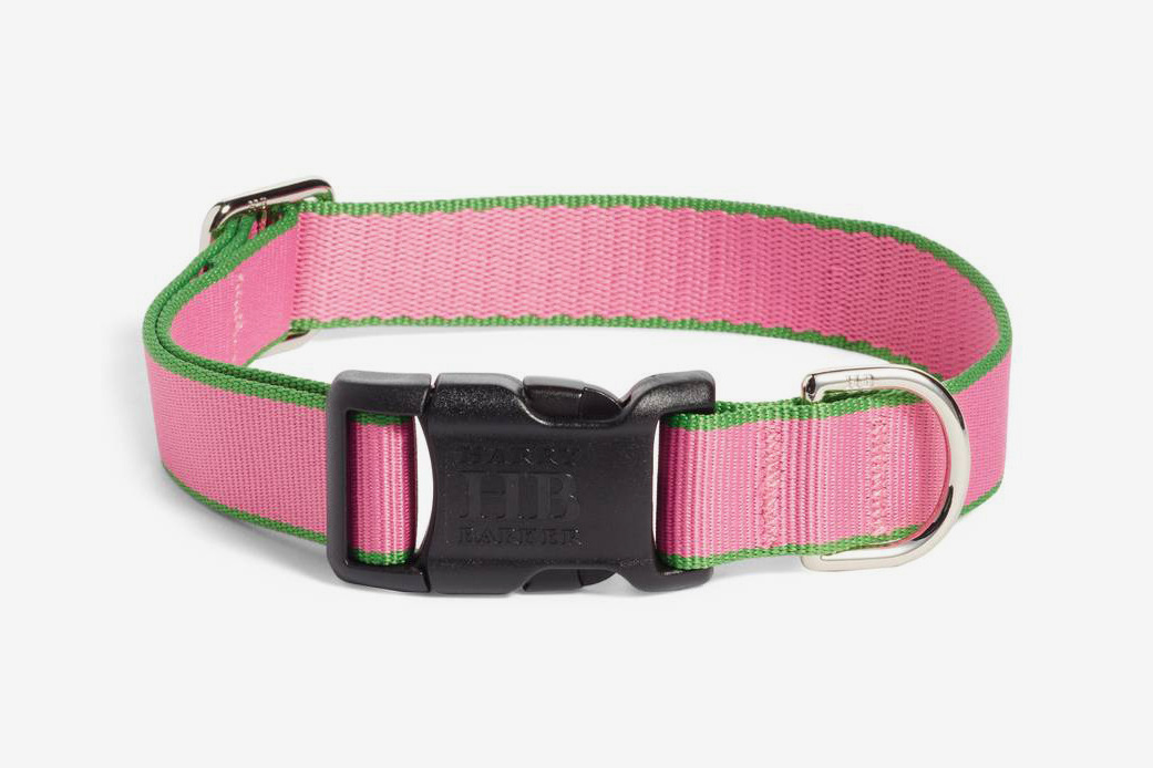 Harry Barker Chelsea Dog Collar (Pink/Green)