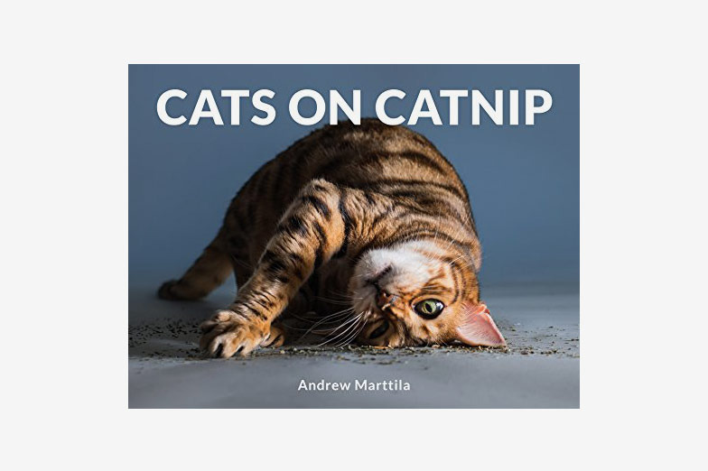 Cats on Catnip by Andrew Marttila