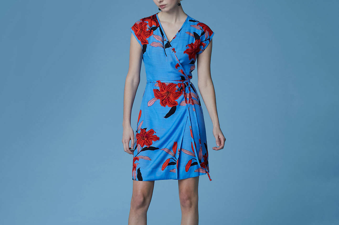Diane von Furstenberg Side Tie Wrap Dress, Argos Hydrangea