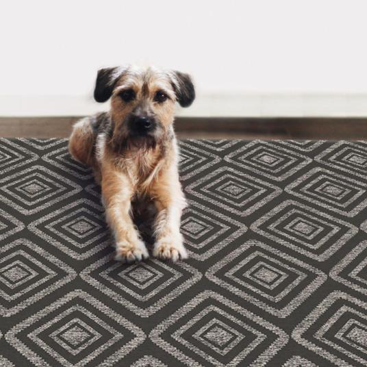 Best Rug For Pet Hair Carpet Vidalondon
