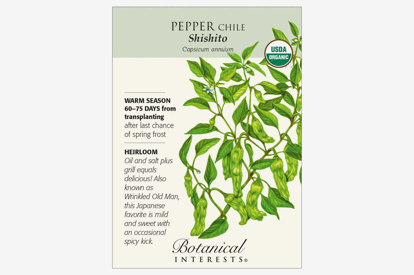 Organic Shishito Pepper Seeds