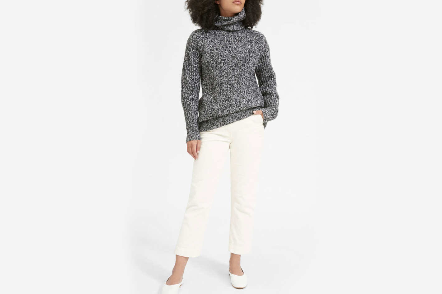Everlane Italian Soft Wool Rib Turtleneck