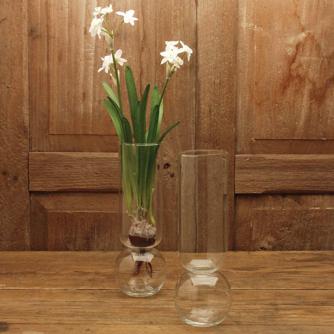 HomArt Glass Bulb Vase