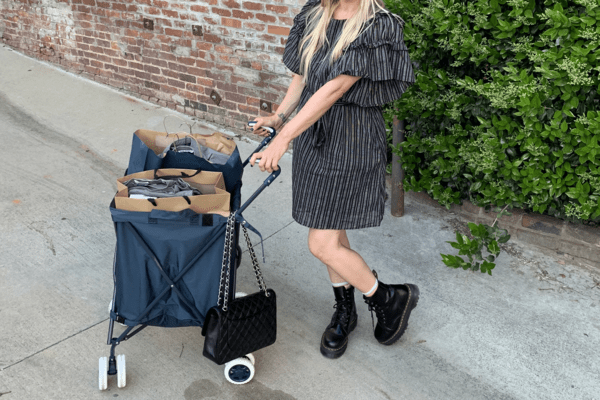 The Surprisingly Nice-Looking 'Granny Cart' That Saved My Shoulders