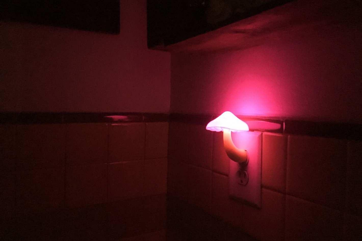 Ausaye Two-Pack Mushroom Night Light Warm White