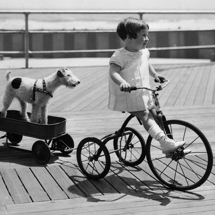 e0ec624366d The Best Tricycles for Kids on Amazon, According to Hyperenthusiastic  Reviewers