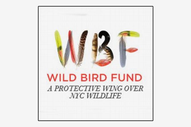 Wild Bird Fund Membership