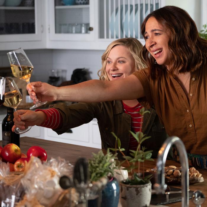 11 Best Plastic Wineglasses on Amazon 2019