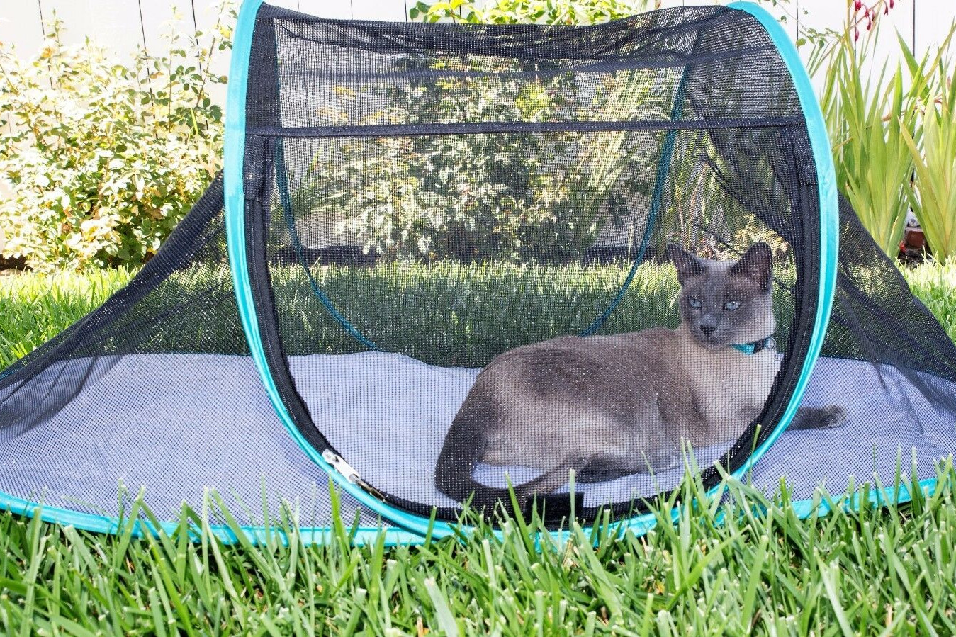 Nala and Company - The Cat House Outdoor Pet Enclosure for Indoor Cats