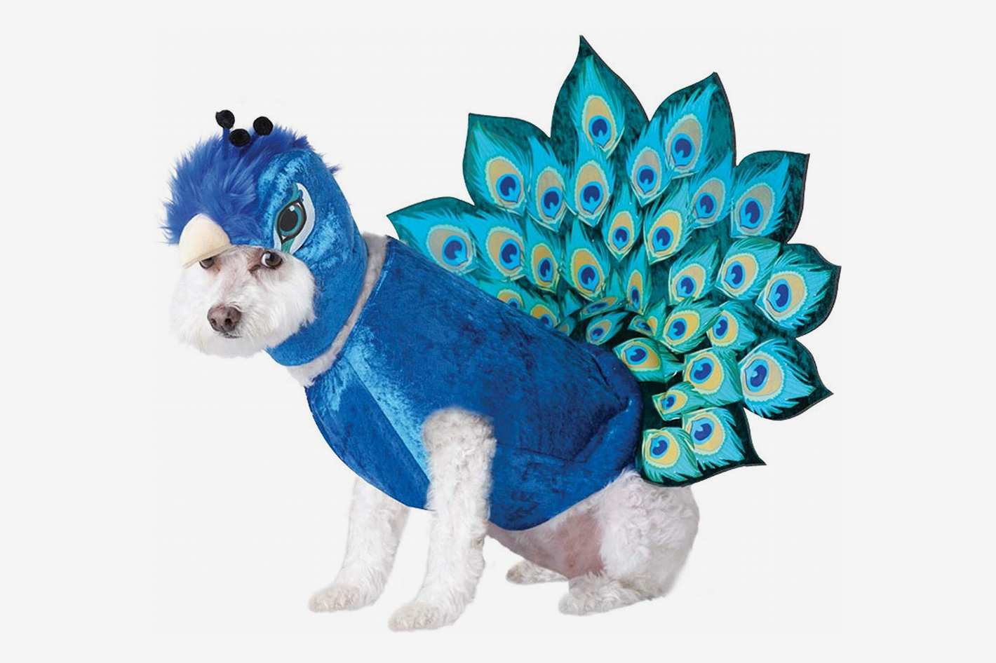 Animal Planet Peacock Dog Costume, Multicolor