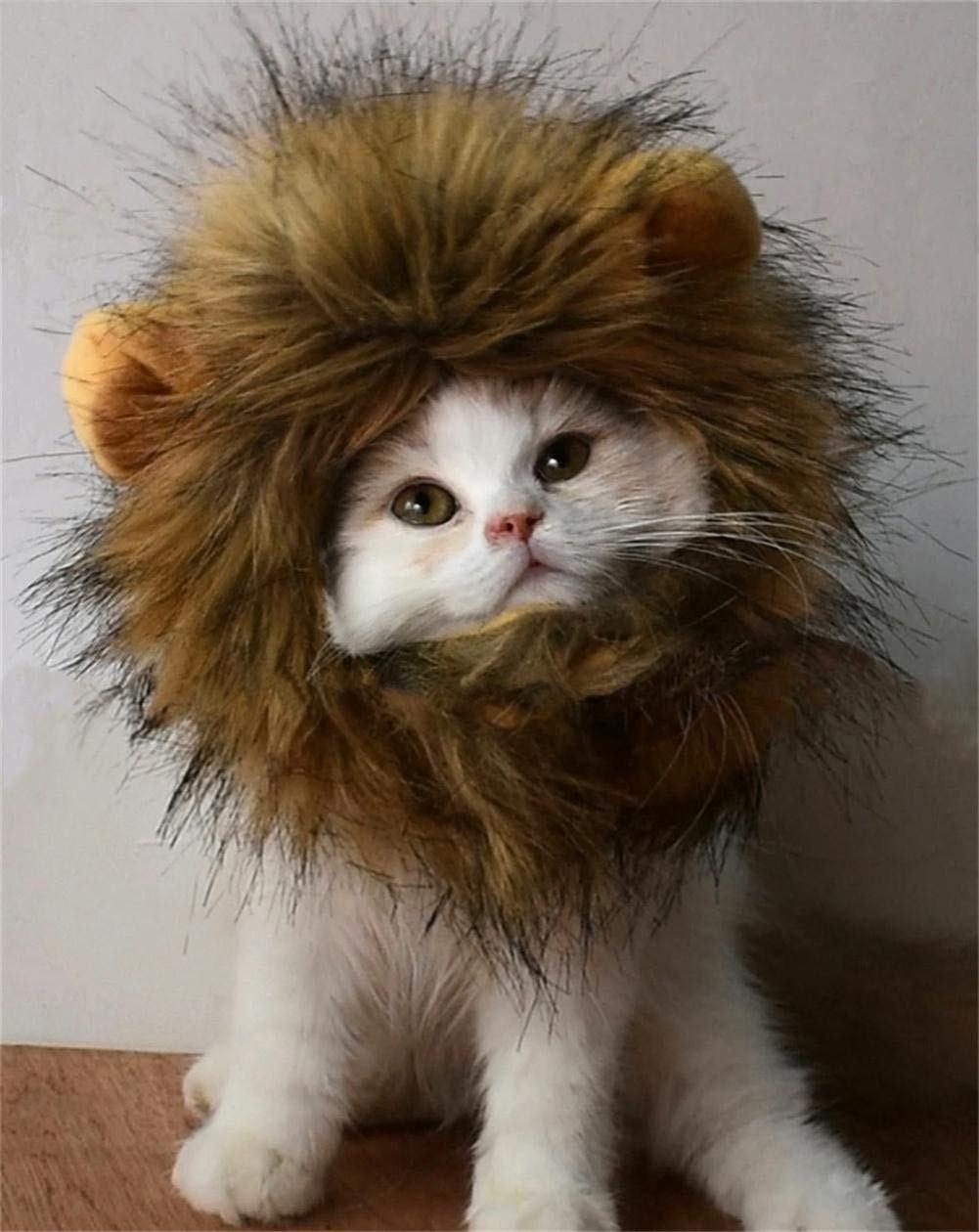 RosyLife Lion Mane Wig for Cats