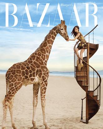 <em>Harper's Bazaar</em>.