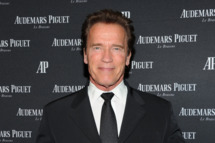 Arnold Schwarzenegger attends Royal Oak 40 Years: From Avant-Garde to Icon at Park Avenue Armory on March 21, 2012 in New York City.