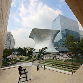 Delve Into Design in Mexico City