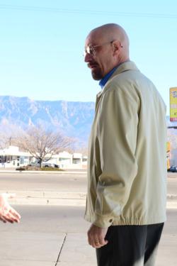 Saul Goodman (Bob Odenkirk) and Walter White (Bryan Cranston) - Breaking Bad _ Season 5, Episode 13 - Photo credit: Ursula Coyote/AMC