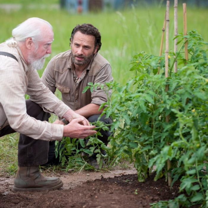 Hershel Greene (Scott Wilson) and Rick Grimes (Andrew Lincoln) - The Walking Dead