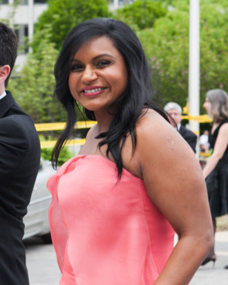WASHINGTON, DC - MAY 03: Actress Mindy Kaling attends the 100th Annual White House Correspondents' Association Dinner at the Washington Hilton on May 3, 2014 in Washington, DC. (Photo by Teresa Kroeger/GC Images)