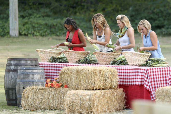 """THE BACHELOR - """"Episode 1903"""" - Jimmy and Chris take 12 stunning bachelorettes to compete in a farm-themed relay race to see if they can handle being a farmer's wife. Included in the grueling gauntlet of farming duties are milking a goat, shoveling manure and wrestling a greased pig. To everyone's surprise, an underdog beats out a brash woman in top physical shape. Things heat up at the after party when one inebriated bachelorette confronts Chris about the number of women he is kissing. But in the end, one dignified and self-possessed charmer wins the group date rose, on """"The Bachelor,"""" MONDAY, JANUARY 19 (8:00-10:01 p.m., ET), on the ABC Television Network. (ABC/John Fleenor)AMBER, BECCA, ASHLEY S., CARLY"""