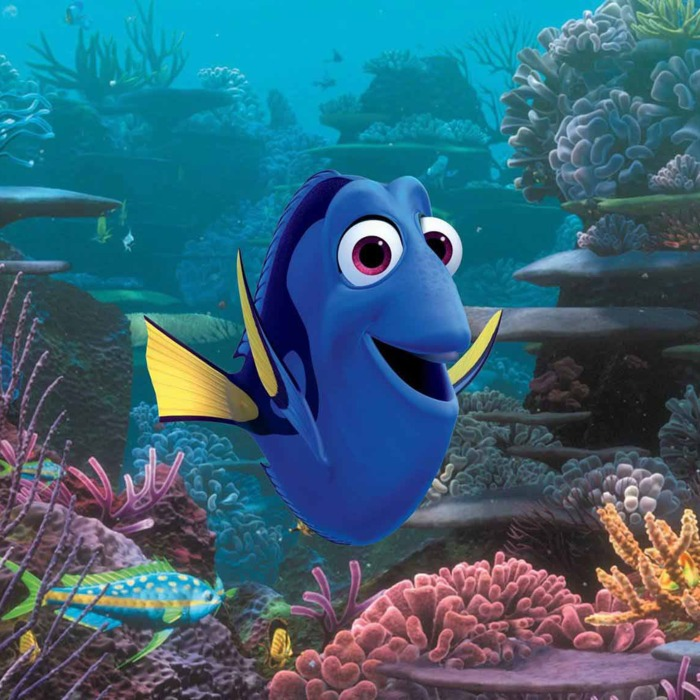 Finding Dory Finds New Delights In A Familiar Setting